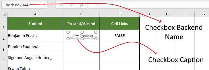 checkbox name vs caption