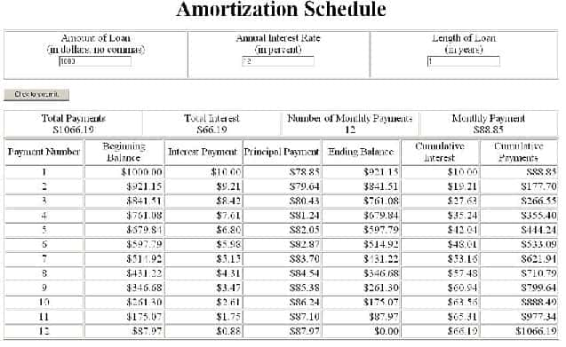 Amortization Schedules Excel  Word Templates