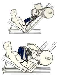 ejercicio en prensa para piernas y gluteos