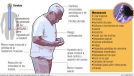 La andropausia favorece el desarrollo de obesidad
