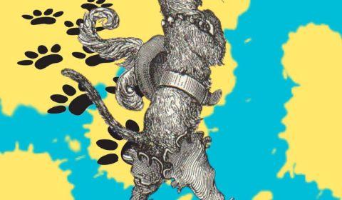 poster pièce de théâtre le cat in re boots instititut français