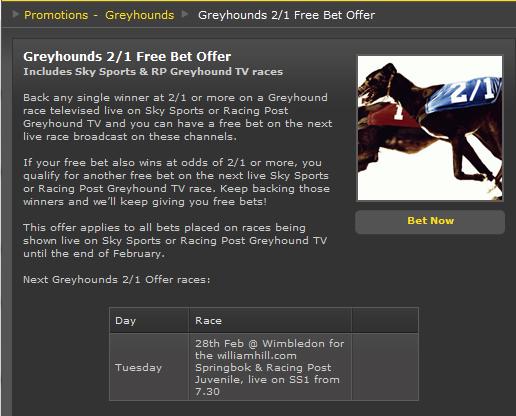 2/1 Greyhound Bet Offer at Bet365