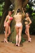 Tree hugging, honey's. Surrey Escorts