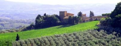 Villa Da Vinci 13