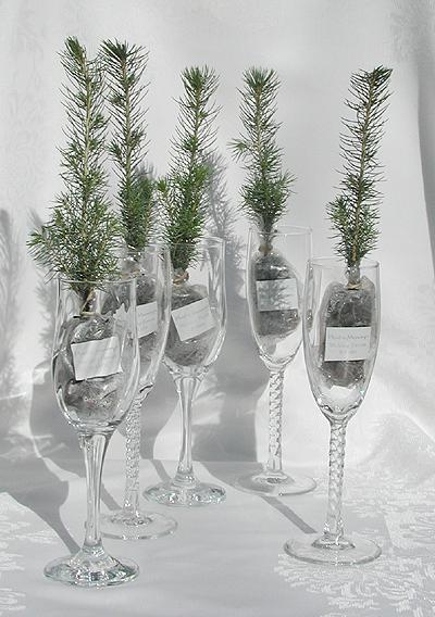 From weddingbells.com