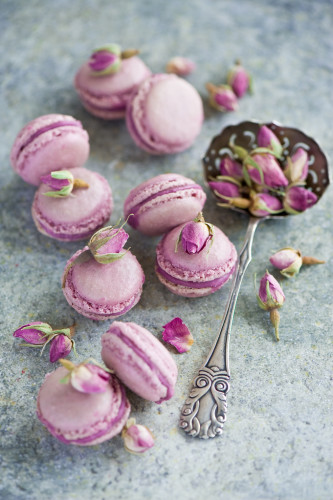 radiant orchid rose macarons