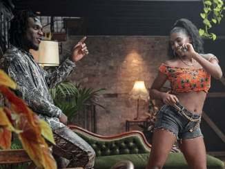 burna boy on the low mp4 download