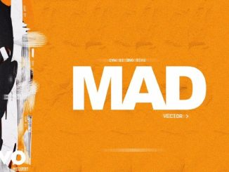 vector mad mp3 mp4 video download