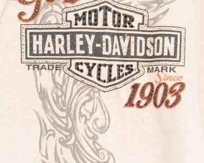 HARLEY DAVIDSON – HOODIE STRASS