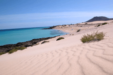 GALERIA-CORRALEJO-EXPRESS-FOR-CRUISE-PASSENGERS