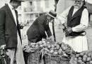 [Photo] Flashback: (1930) Potato Farmer in Tripoli, Greece