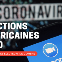 Élections américaines 2020 : Zoom sur les électeurs de l'ombre