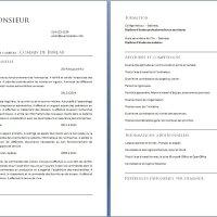 Exemple de Curriculum Vitae d'un Commis de Bureau