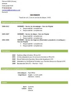 Exemple De C V Infirmier Jeune Diplome