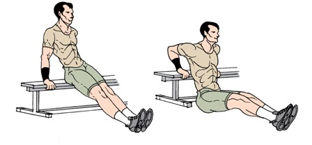 bodyweight exercises: bench dips