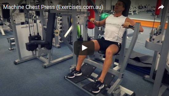 Hammer Strength Bench Press Exercises Com Au