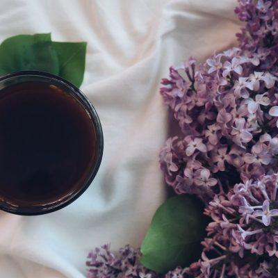 Tisane aux fleurs de lilas