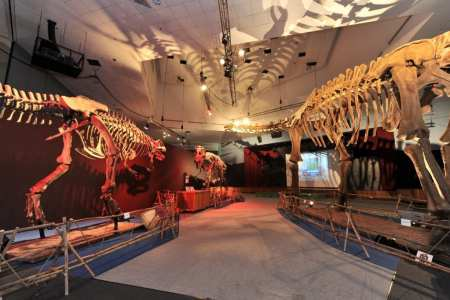 Titans of the Past and Ice Age Mammals, Singapore