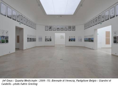 Jef Geys - Quadra Medicinale - 2009 - 53. Biennale di Venezia, Padiglione Belgio - Giardini di Castello - photo Katrin Greiling