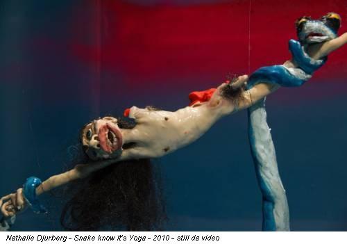 Nathalie Djurberg - Snake know it's Yoga - 2010 - still da video