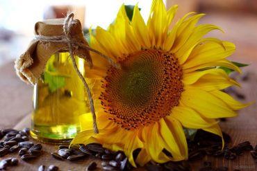 5 najlepszych właściwości oleju słonecznikowego