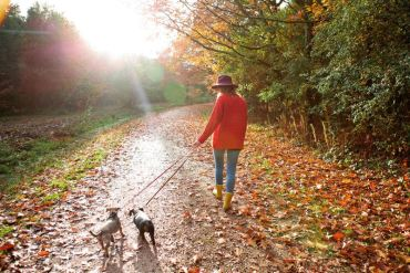 Chodźmy na spacer