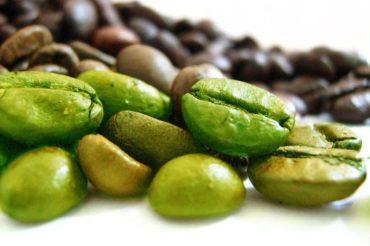 Zielona kawa – Cała prawda o tym składniku diety