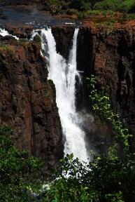 Iguazu Detail 3