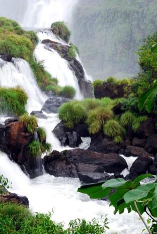 Iguazu Detail 2