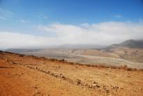 wüste Wüste (noch nicht Atacama, denn da gibts nix Grünes außer der Polizei, höhö)