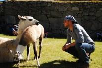 The Lama Whisperer