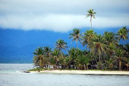 Kokosnussplantage?