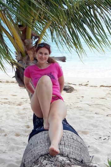 Turtle Island - Palmenimpressionen