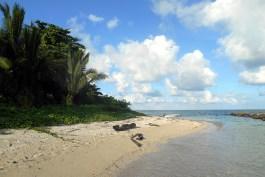 Turtle Island - Verlassene Strände