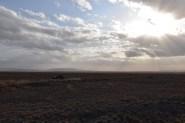 Endless Serengeti