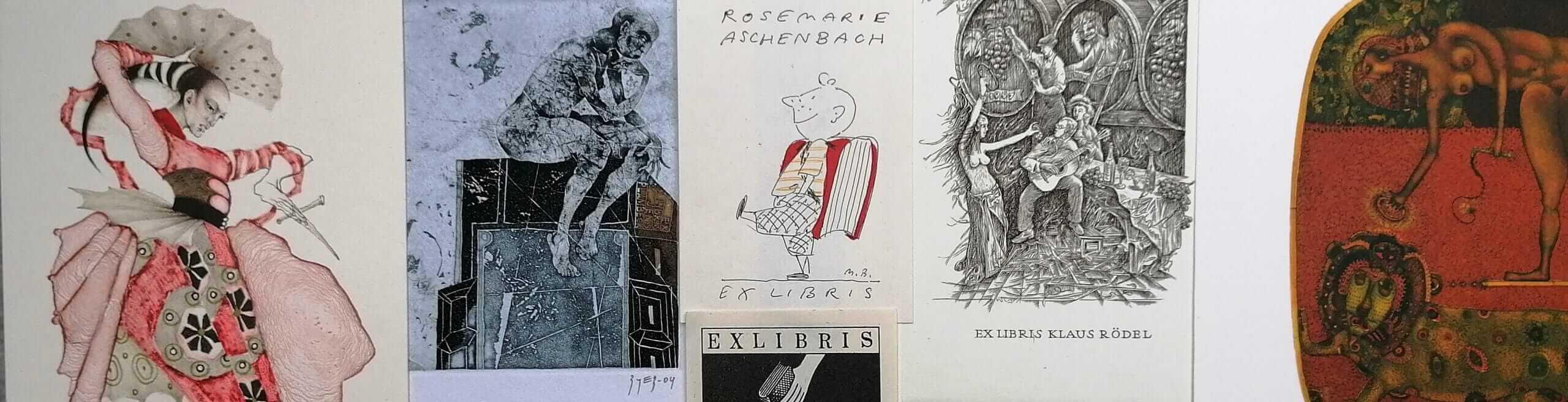 Homepage Relaunch DEG-Publikationen Aus den Jahrbüchern - Slider