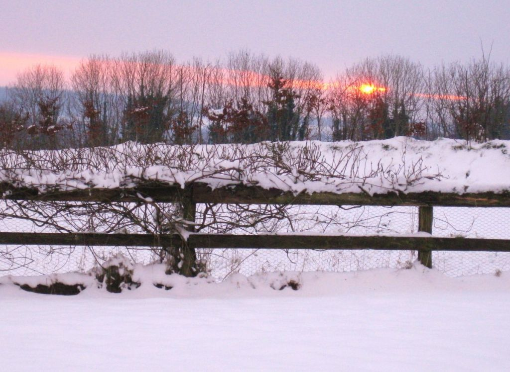 Stunning sunset in the snow at West Withy Farm. Taken Jan. 2013