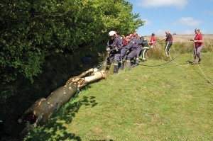 Inter-agency training  exercise involving Exmoor Search and Rescue and the Devon and Somerset Fire and Rescue Service.  This photo show a simulated horse-riding accident.  Courtesy Devon and Somerset Fire & Rescue Service.