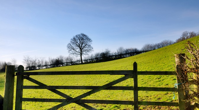 Council Calls on Support for Rural Petition