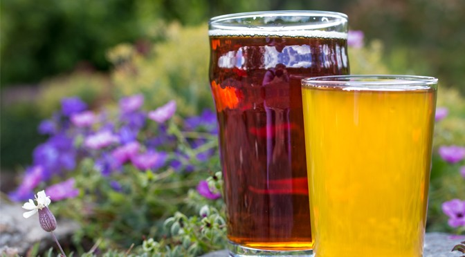 REAL ALE AND CIDER WEEKEND AT ROSEMOOR