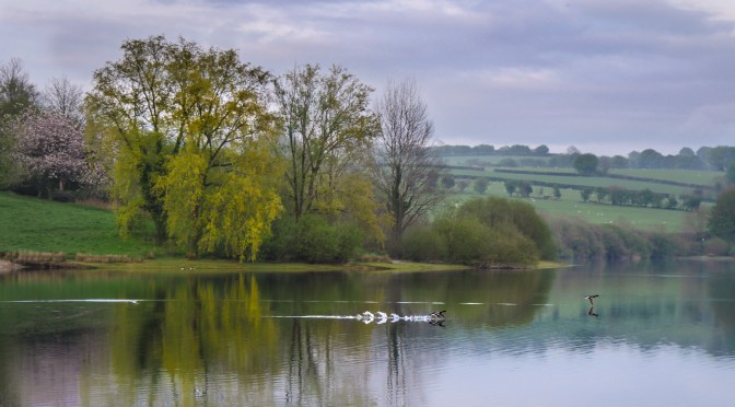 SOUTH WEST LAKES TRUST AND SOUTH WEST WATER PHOTO COMPETITION