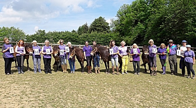 EXMOOR PONY CENTRE CANTERS INTO THE FUTURE