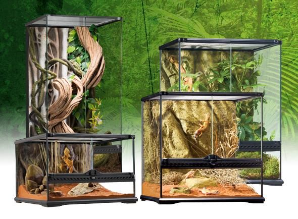 Natural Terrarium Small