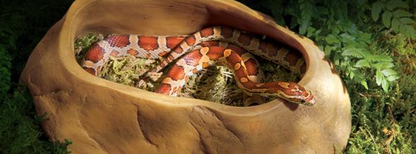 Snake Cave - 3 sizes