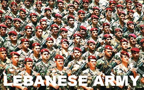 We support the Lebanese Army in the current fights it is having with the