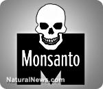 Monsanto-Logo-Skulll