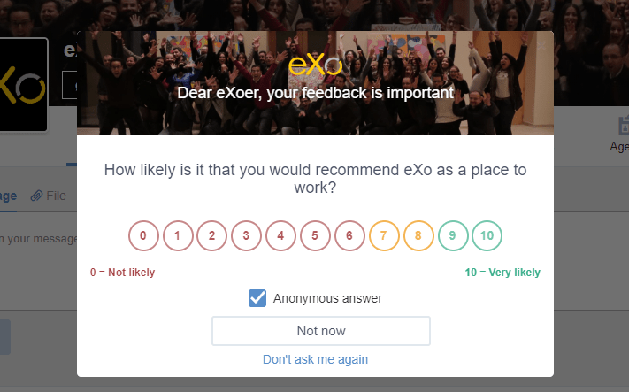 eXoer Platform : Employees Feedback