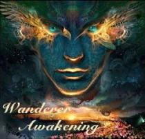David Wilcock Wanderers Awakening