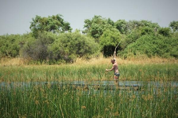 botswana-post-picsmokoro-delta-tripdsc07163