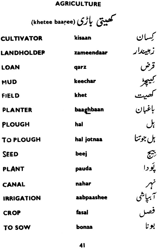 How To Learn Urdu Writing And Reading Pdf How To